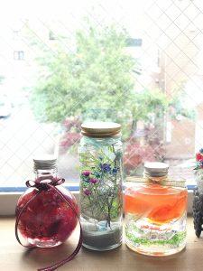 herbarium体験